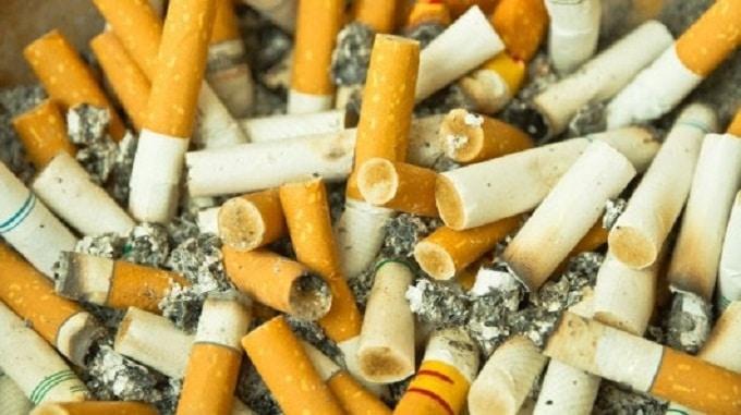 Phế thai thuốc lá