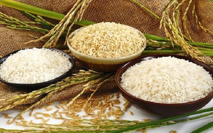 quy trình xuất khẩu gạo tại Việt Nam