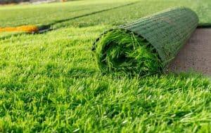 Hướng dẫn thủ tục nhập khẩu thảm cỏ nhân tạo