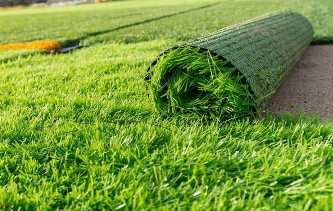 thủ tục nhập khẩu cỏ nhân tạo